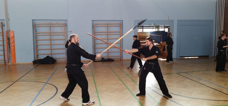 Training Halbe Stange / Jägerstock