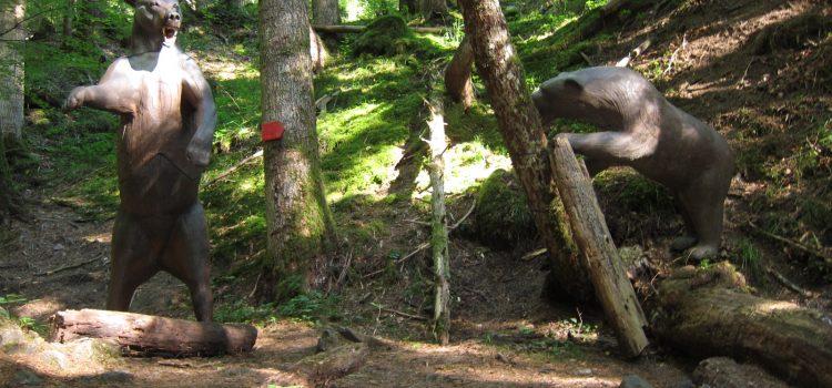 Parcour der Isarwinkler Bogenschützen