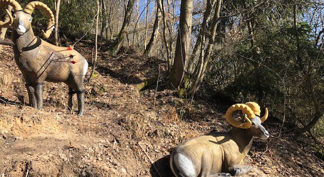 Saisonstart bei bestem Winterwetter – 16.2.2019 Bogn Jager Jagdturnier in Hirschau